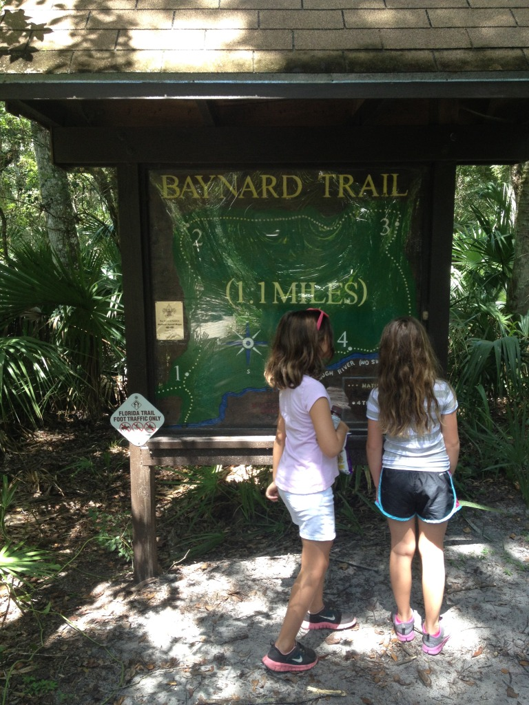 Hiking at the Hillsborough River State Park
