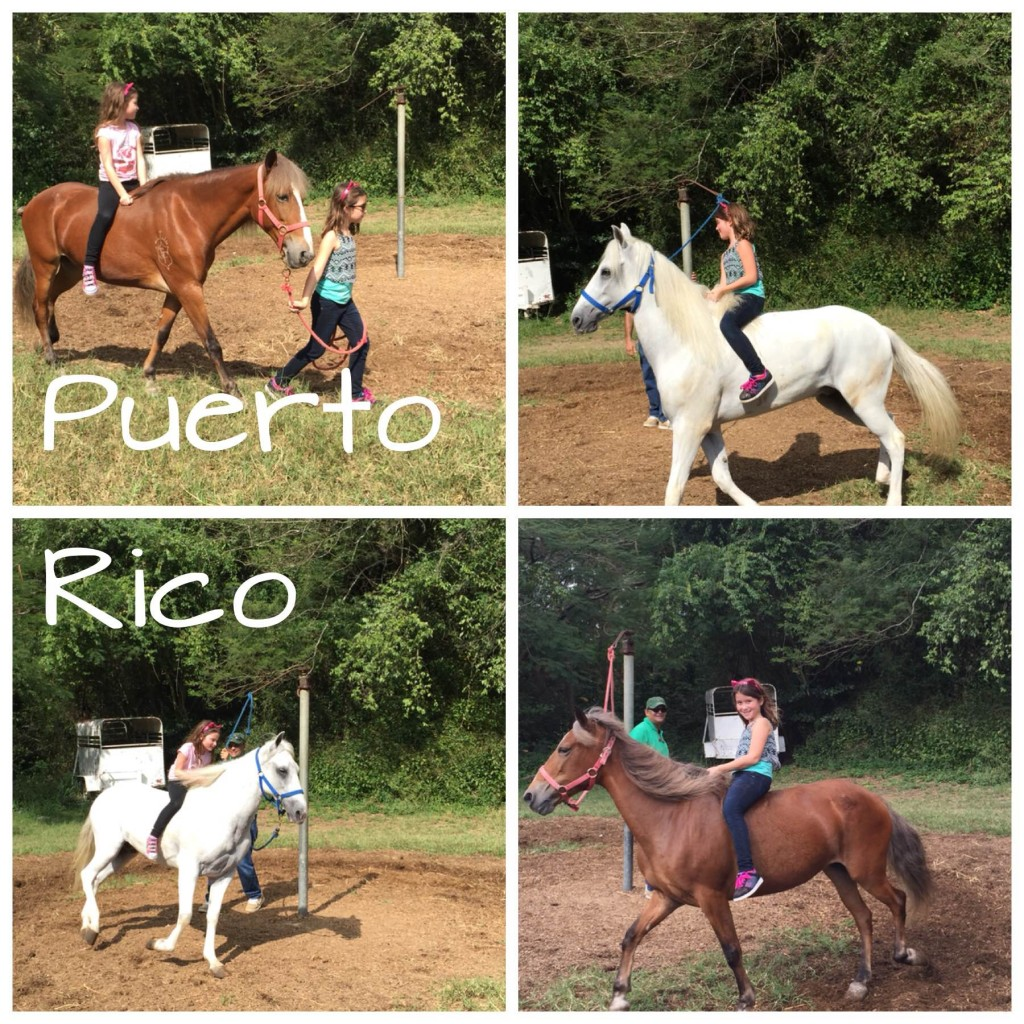 Horseback riding in Puerto Rico.